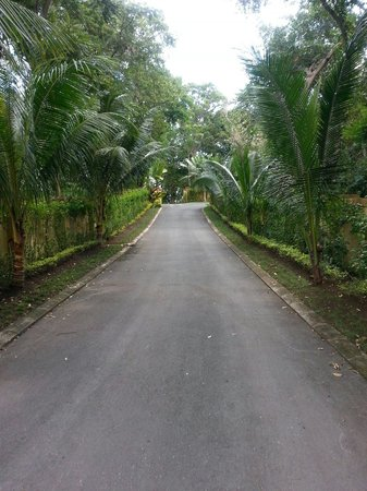 Hermosa Cove - Jamaica's Villa Hotel: Driveway into the resort