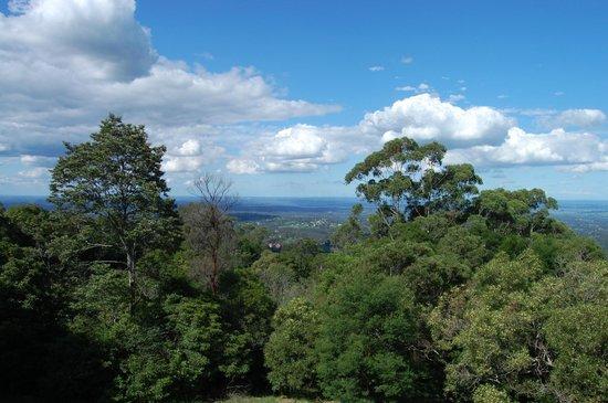 AEA Luxury Tours: View of Blue Mountains