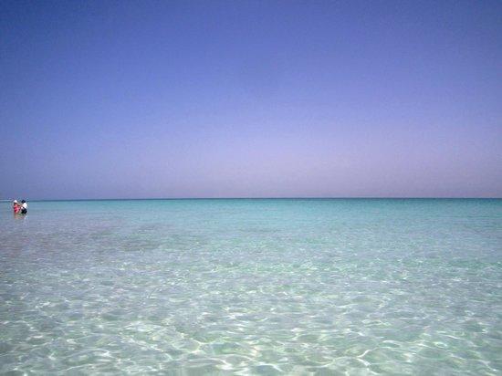Kibbutz Ein Gedi : Spiaggia privata