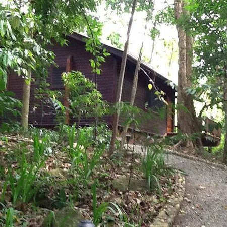 The Lodge and Spa at Pico Bonito : cabin 21