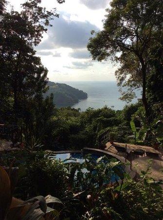 Mango Moon Villa: vue depuis la chambre