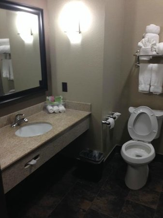 Holiday Inn Express Lubbock South: Bathroom sink