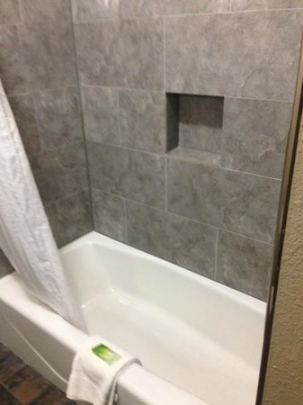Holiday Inn Express Lubbock South : Shower
