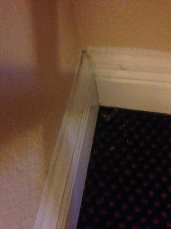 Days Inn Fort Lauderdale-Oakland Park Airport North: Dirty moulding
