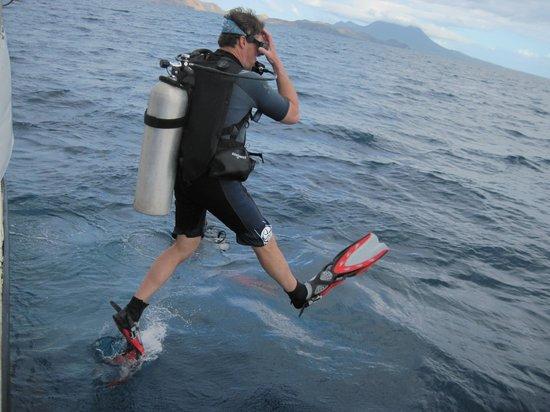 Pro Divers, Inc. : Into the sea
