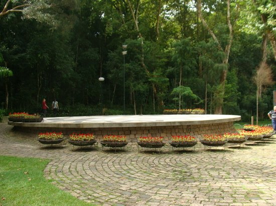 The Pope Woods and Polish Memorial: Bosque do Papa 01