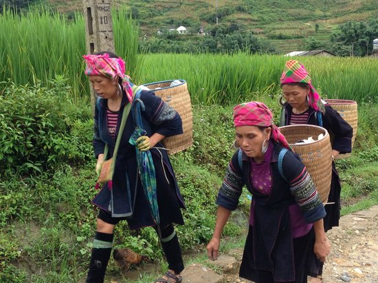 Victoria Sapa Resort and Spa : Hmong tribe tour guides