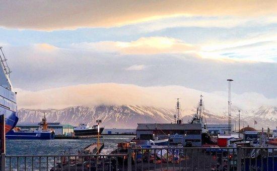 Icelandair Hotel Reykjavik Marina: View of bay from 2nd floor room