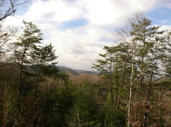 Tree Tops Resort: Our view!