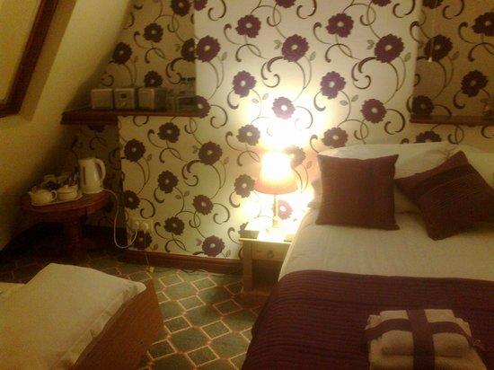 Ael y Bryn Hotel: room 9