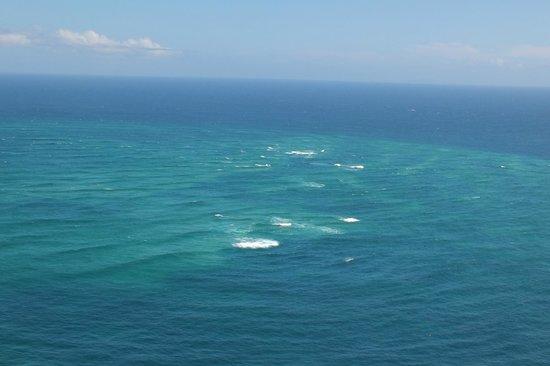 Cape Reinga Adventures Day Tours : Twp oceans meet