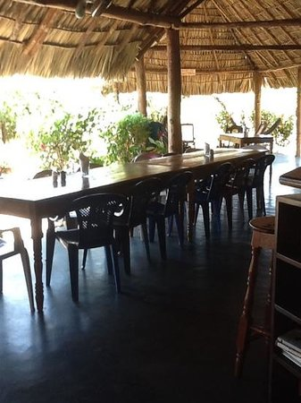 El Coco Loco Resort : Eating together is wonderful and the food is fresh/delicious.