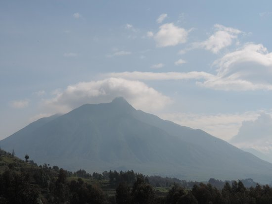 Mountain Gorilla View Lodge: Volcanos from your room