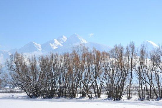 Ninepipes Lodge: McDonald Peak