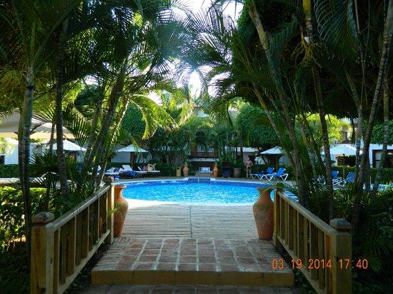 Hotel Occidental Grand Punta Cana Tripadvisor