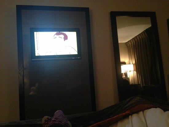 Milton Hill, Abingdon: TV in room