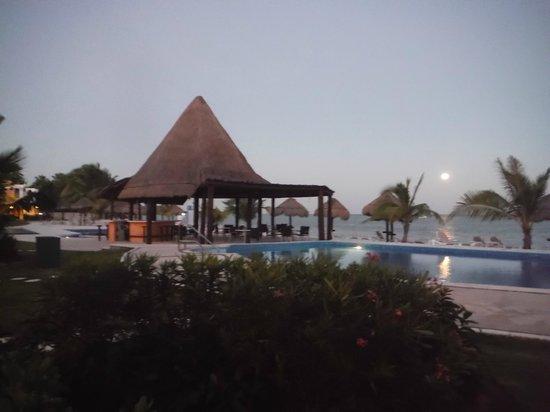 PavoReal Beach Resort Tulum: pool bar