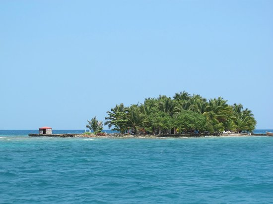 Thomas Owen Caye - Home of ReefCI