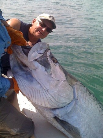 The Fishing Guy Private Charters Tarpon Daytona Ponce Inlet New