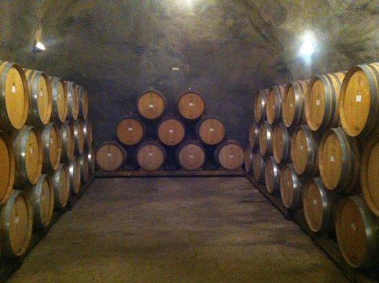 Queenstown Wine Trail: Barrel room at Gibbston Valley