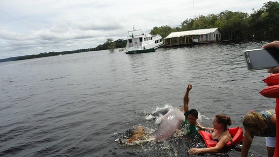 Amazon Jungle Palace: Visita aos botos