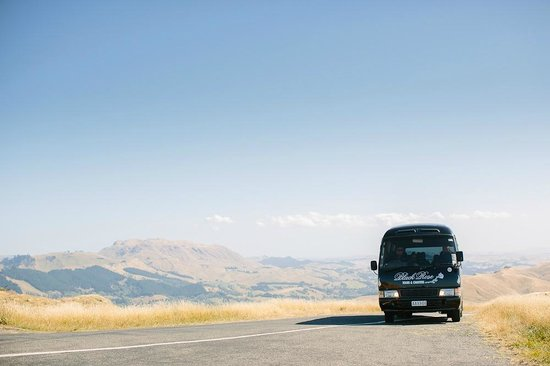 Up Te Mata Peak with Black Rose Limousine