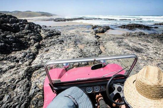 Sandtrails Hokianga : Dune buggy over rocks