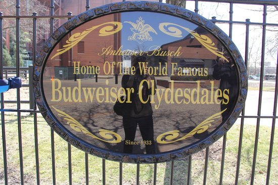 Budweiser Brewery Experience: Stables