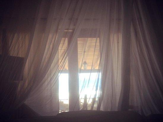 Hotel Nude Zipolite: Desde la cama.