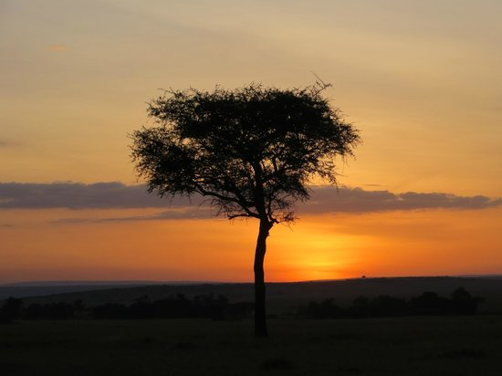 Kicheche Bush Camp: A sunrise