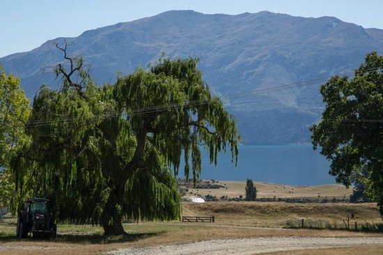 Lake Hawea Station: View from just outside Packhorse Cottage-telephoto lens