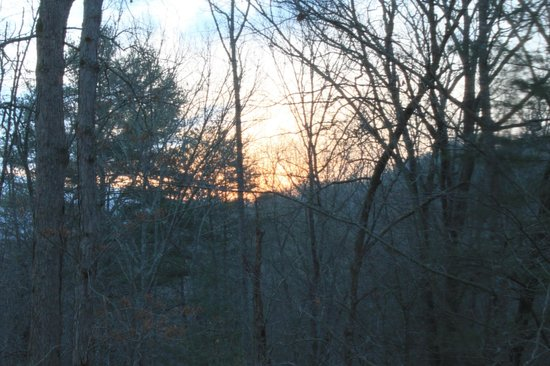 Your Home in the Woods Bed & Breakfast: Sunrise