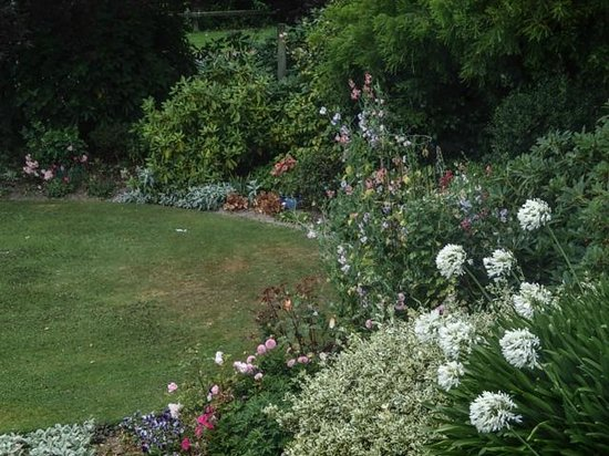 The Downs B & B : Garden setting