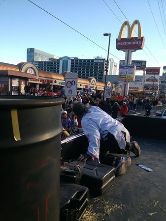 Las Vegas Zombie Stripper