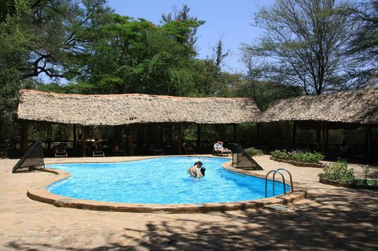 Samburu Intrepids Luxury Tented Camp: The pool