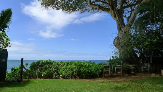 Paia Inn: The outdoor garden near the beach