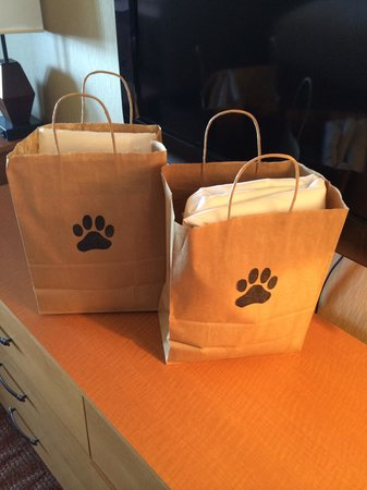 Hallmark Resort: Dog gift bags!