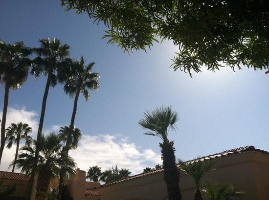 Scottsdale Plaza Resort: View from my chair..