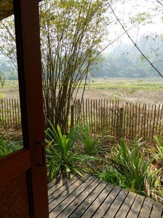 Gims Resort : Uitzicht op rijstvelden