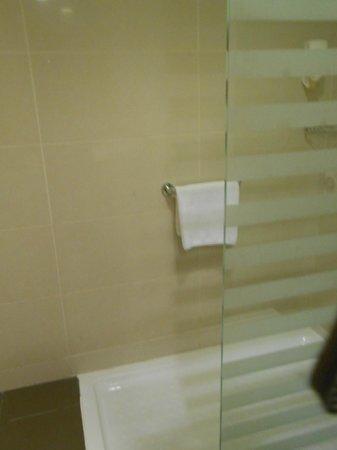 Citymax Hotels Bur Dubai: Bathroon
