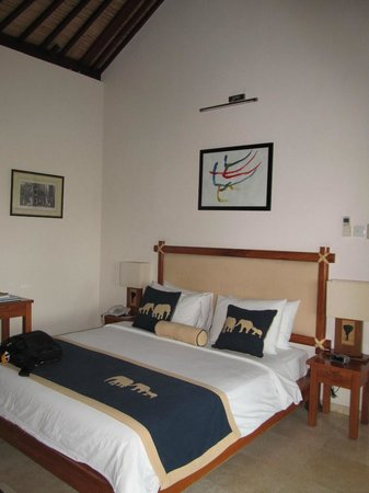 Elephant Safari Park & Lodge: Paddy view room with elephant painting