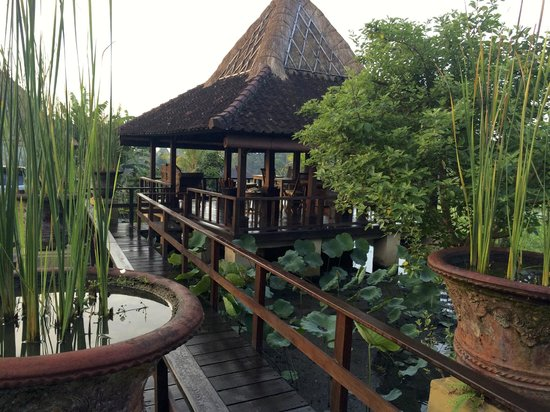 Wapa di Ume Resort and Spa : Pavilion in paddy for relaxing