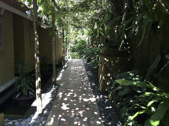 Wapa di Ume Resort and Spa : Beautiful dappled path