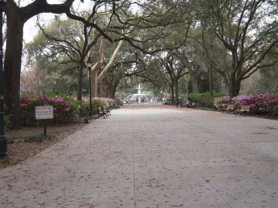Savannah Historic District: Árvores no Parque