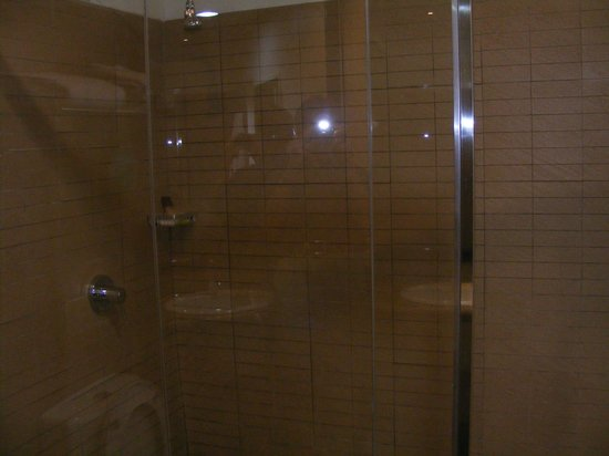 Protea Hotel by Marriott Lusaka: Shower oly. No bath.