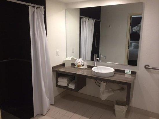Rumor Hotel: Handicap bathroom