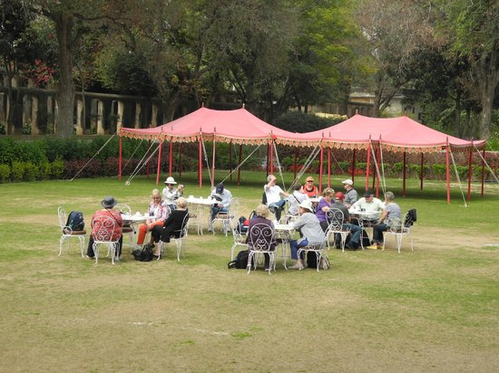 Samode Bagh : afternoon tea on the lawn...