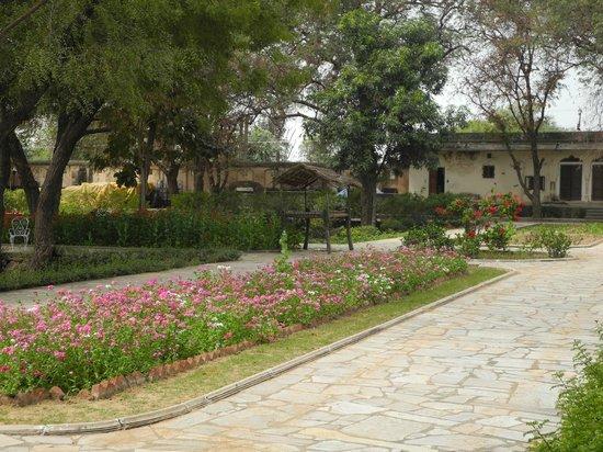Samode Bagh : gardens
