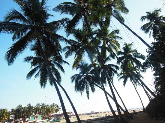Colonia Santa Maria (CSM): Пляж