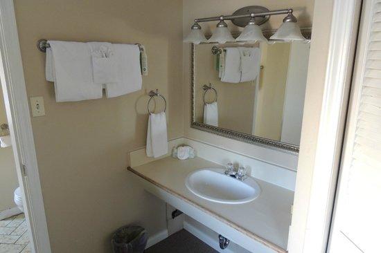 Dalton Hotel & Suites: Sink
